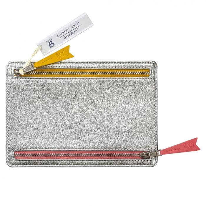 Currency Purse Silver Navy