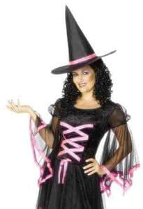 Winsome Witch Halloween Costume
