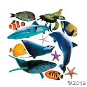 Set of 13 Large Realistic Sea Life Animal Cardboard Cut Outs